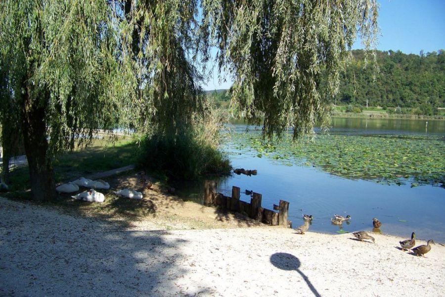 Morto sulle rive del lago di Fimon, giallo ad Arcugnano